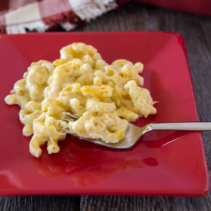 Mac and cheese on a plate with a fork