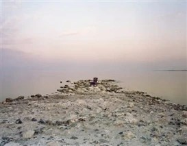 Virginia Beahan: Elegy for an Ancient Sea at Museum of Contemporary Art San Diego, La Jolla