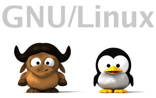 Distribuciones GNU/Linux 100% libres, las únicas avaladas por la FSF