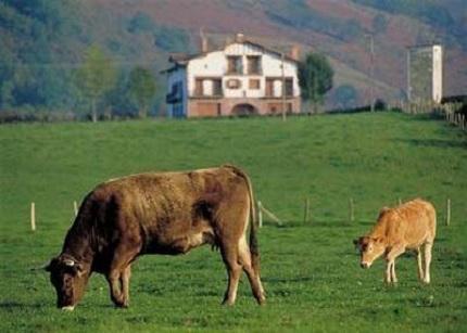 Resultado de imagen de IMagenes rurales