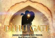 Nadeem Cheema's Delhi Gate Got a Releasing Date