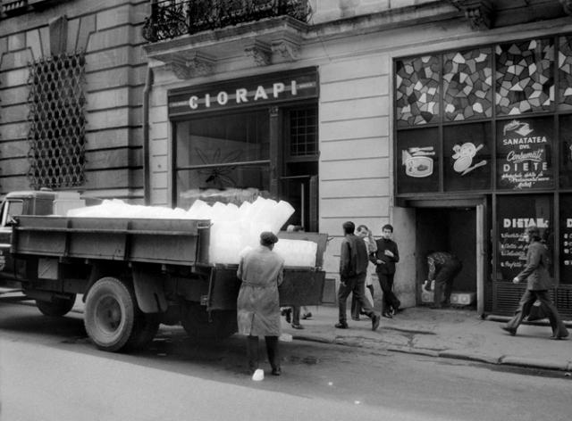București // 1974