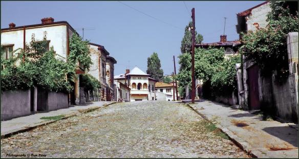 Strada Ion țăranu, 1980