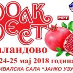 """Ханка Палдум и Мерима Његомир на """"Валандово фолк-фест"""""""