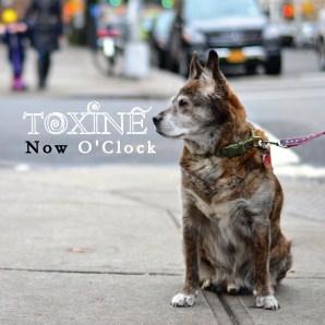 Toxine - Now O'Clock (2015)