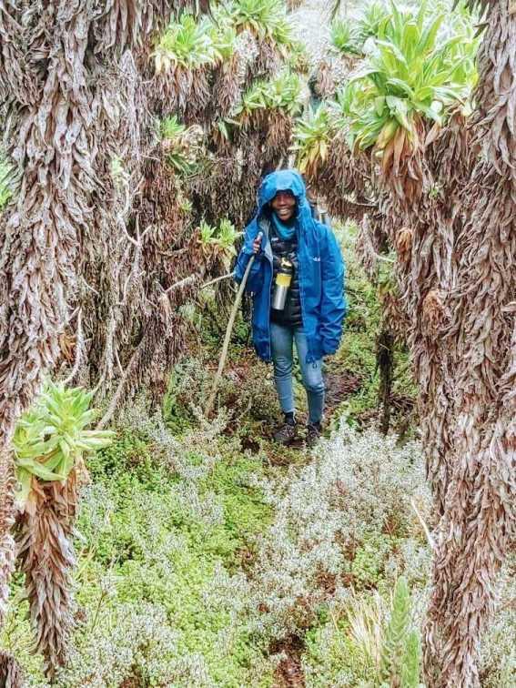 Jean Byamugisha. Mount Elgon mountain hike Uganda