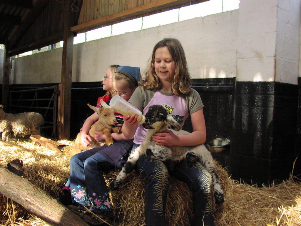 History Meanwood Valley Urban Farm