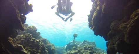 Marine Sciences Club bonds at depth