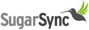 logo ss.v2 - مجلة ووردبريس