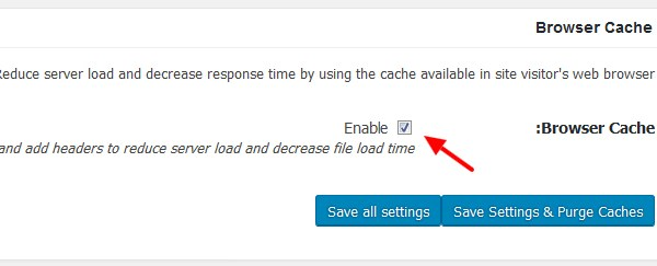 w3 total cache browser cache  - مجلة ووردبريس