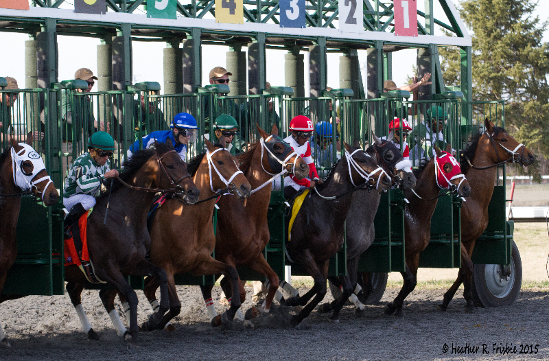 They're off in a line in the Bourbonette