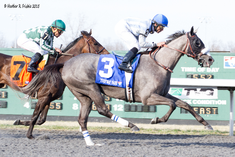 Don't Leave Me puts them away nearing the wire in under Jose Lezcano.