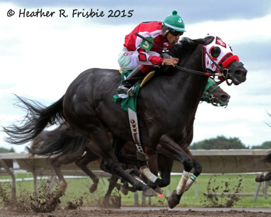 Fortune in a Wagon with Jorge Torres up and trained by Stacy Charette-Hill took the first Derby Trial in 20.439.