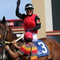 American Mon Amie, Priceless Commodity Take Father's Day Stakes