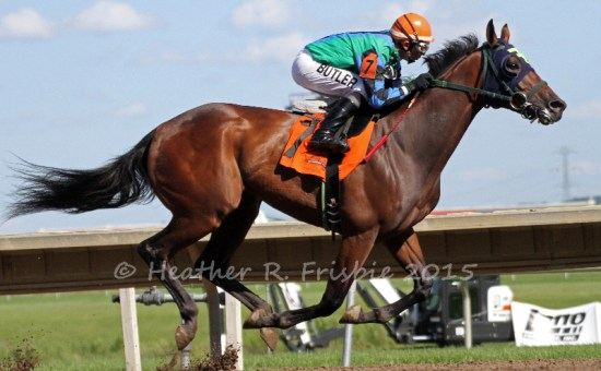 Hold for More cruising to victory under Dean Butler in the MTA Stallion Auction Stakes