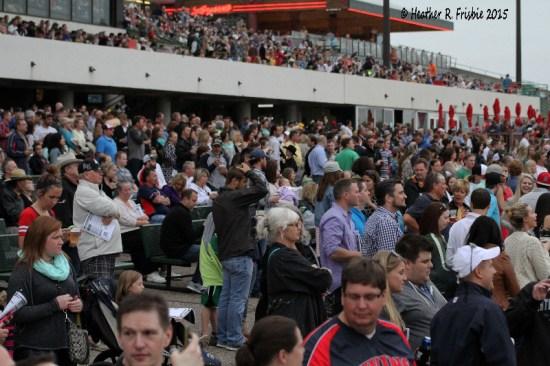 Opener Crowd