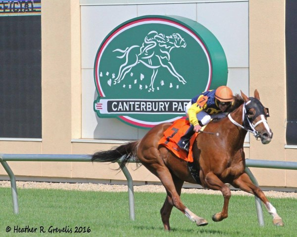 Richies Sweetheart, clear in the Honor the Hero Stakes