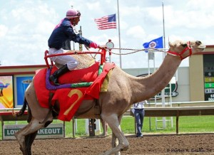 Hillary Camelton crossing the finish line in the camel race