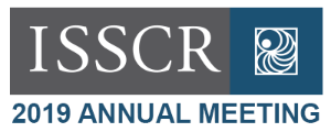 ISSCR Annual Meeting 2019