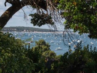 Vue sur le Bassin d'Arcachon depuis le Cap Ferret