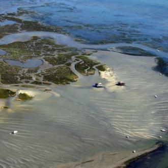 Vue aérienne sur l'ile aux oiseaux au milieu du Bassin d'Arcachon