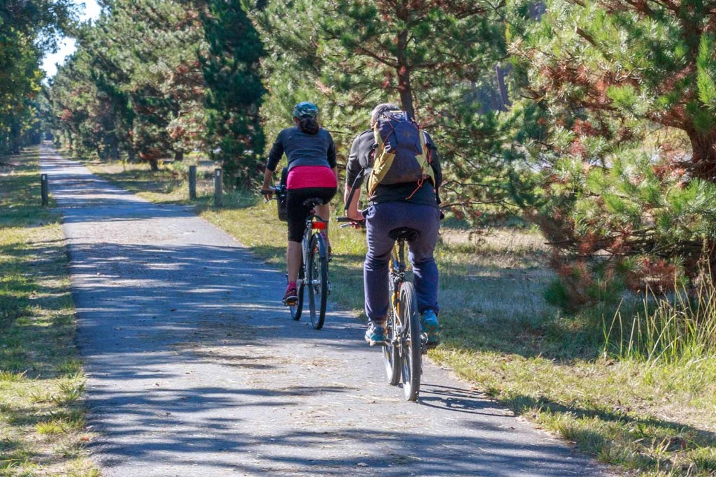 Vélos de location au Four sur la presqu'ile du Cap Ferret