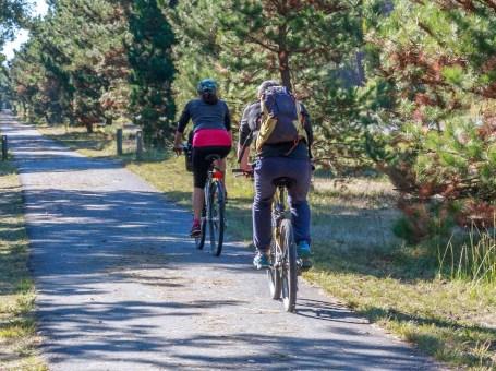 Location de vélo du Four