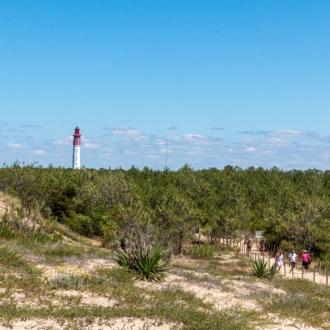 Le phare du Cap Ferret depuis la dune