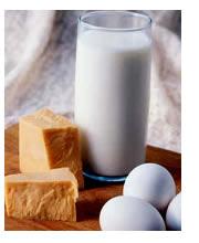 Alimenti senza lattosio