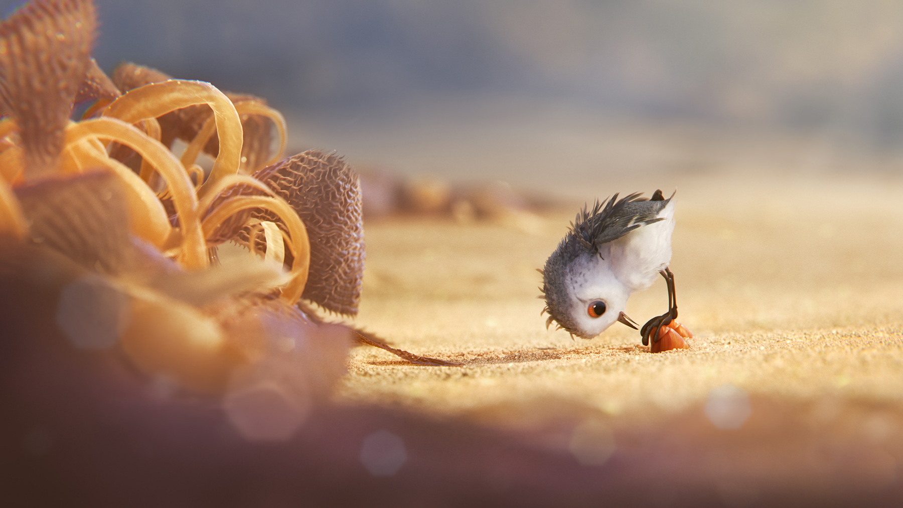 """Screen shot from """"Piper"""", a short film by Pixar."""