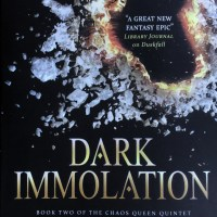 Dark Immolation by Christopher Husberg - book review