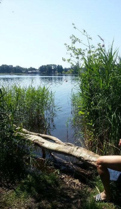 Großer Seddiner See (Nordseite)