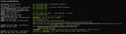 Analiza poprawności implementacji protokołów SSL/TLS