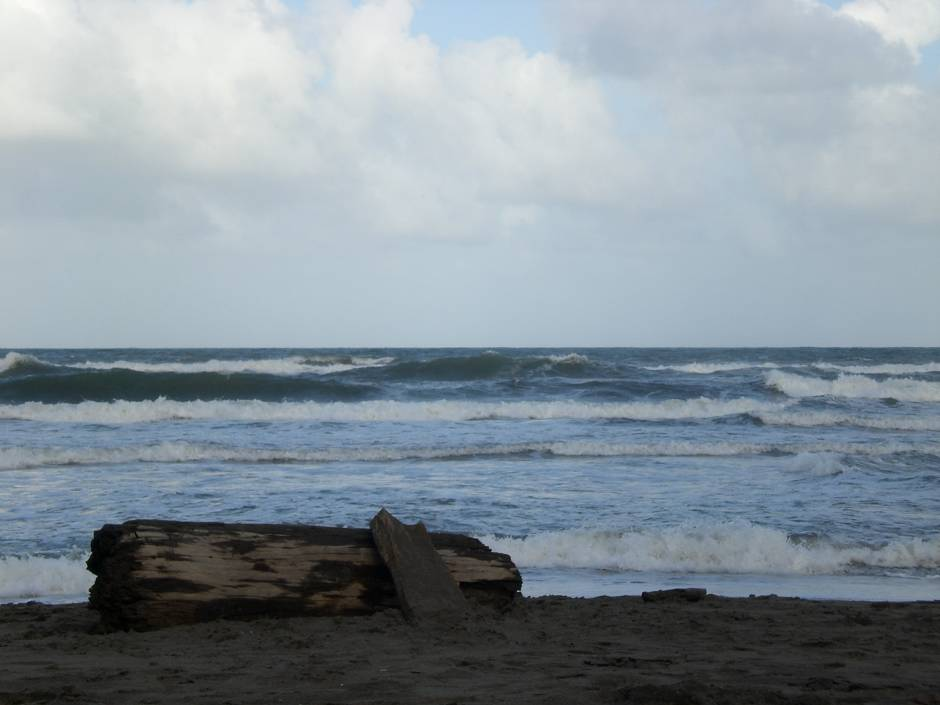 Wild Caribbean sea in Tortuguero, one of the best beaches in Costa Rica