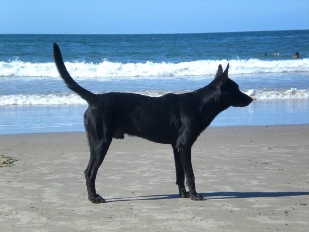 Punta del Diablo - among the best beaches in Uruguay