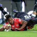 Sharks Come Up Short Against The Lions