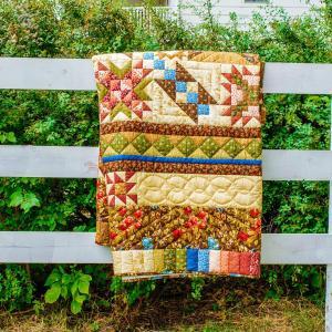 Amish and Mennonite Made Quilts - Storyteller's Sampler