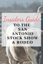 The San Antonio Stock Show & Rodeo is one of the main highlights of the year. Here are some tips you need to know to have a great time.