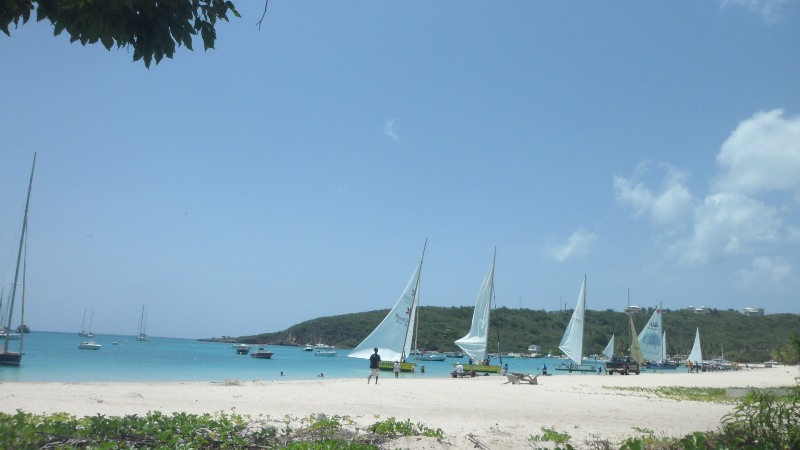 Boats at the start of the race