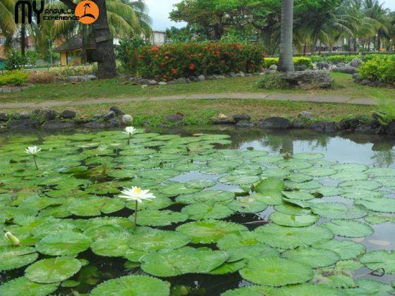 Turtle River Park, Ocho Rios Jamaica