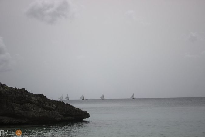 Viewing the boat race from Little Bay