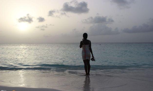 Summer Days – Shoal Bay