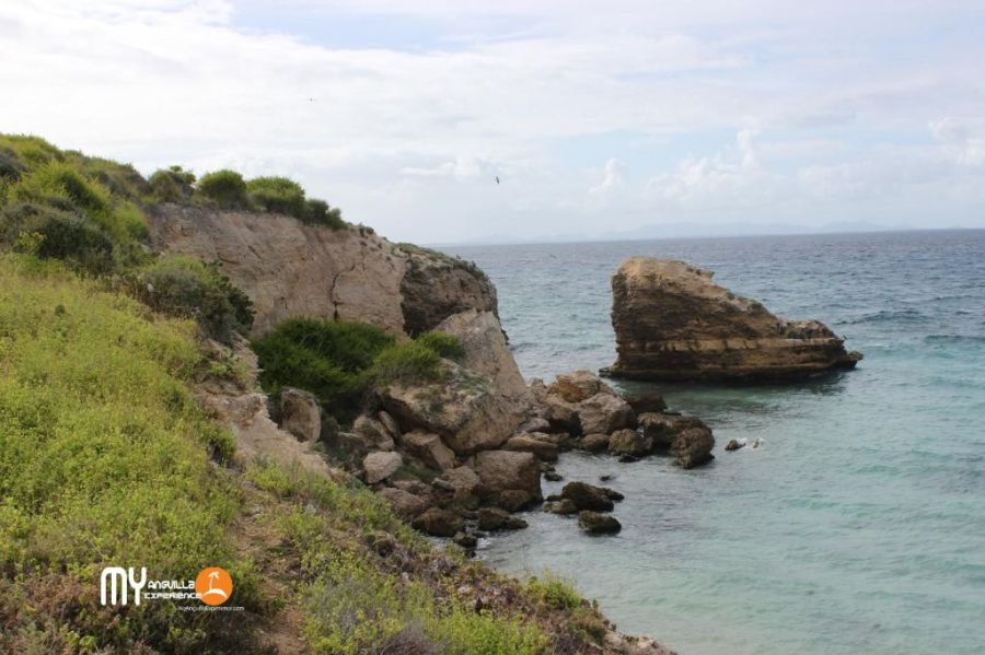 Dog Island east coast