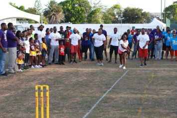 Fun Day 2016 - Cricket ball