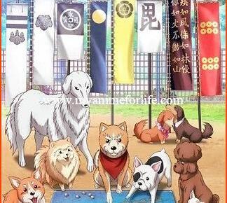 Anime Oda Cinnamon Nobunaga Listed With 12 Episodes