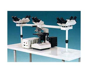 Five-Observing Compound Microscope 40x-1600x
