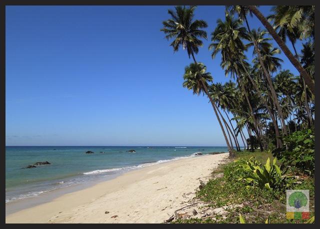 Ngapali Beach - Myanmar (Burma) 5
