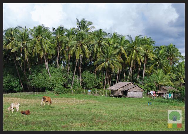 Fishing village Gwa - Rakhine State - Myanmar Travel Essentials (Burma) 3