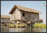 Floating Gardens Inle Lake - Myanmar (Burma) 3