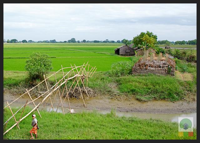 Bamboo Bridge - Myanmar (Burma)